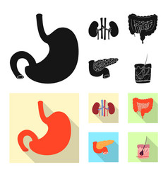 Isolated object of body and human icon set of vector