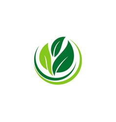 leaf ecology bio logo vector image