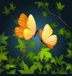 two flying butterflies vector image