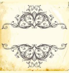 baroque of vintage elements for design vector image
