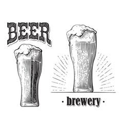 beer glass filled with beer vintage vector image