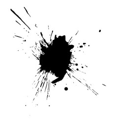 black ink drop and splash vector image
