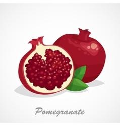 Pomegranate icon Cartoon vector
