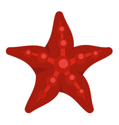 red starfish icon isolated vector image