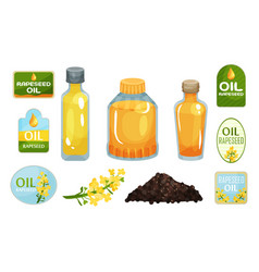 Vegetarian rapeseed oil bottles set vector
