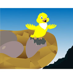 yellow bird vector image