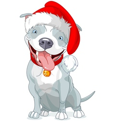Christmas Pit Bull Dog vector image