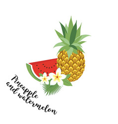 pineapple and watermelon - vector image vector image