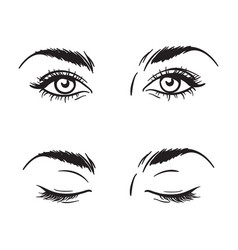 beautiful female eyes set - open and closed vector image vector image