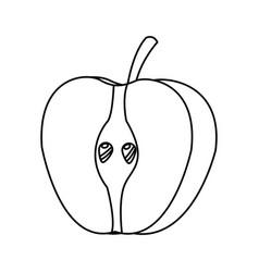 half apple fresh tasty fruit design line vector image
