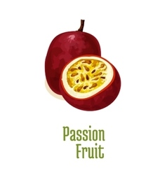 Passion fruit maracuya exotic isolated icon vector image