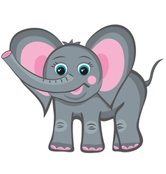 elephant smile vector image