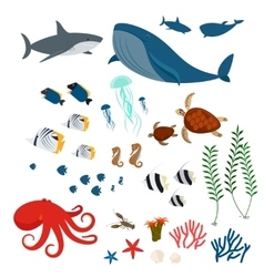 Ocean animals and fishes vector image