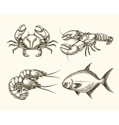 seafood in hand drawn style vector image