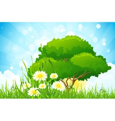 Green Grass with Tree vector image