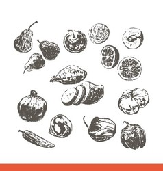 Ink hand drawn fruits and vegetables set vector image vector image