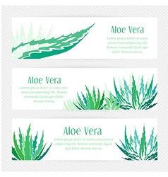 Aloe vera horizontal banners set vector