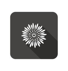 Chrysanthemum flower icons Floral symbol vector
