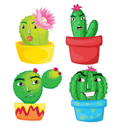 four cactus plants in the pots vector image