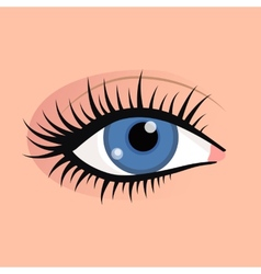 Open female eyes image with beautifully fashion vector image