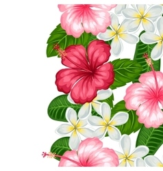 Seamless border with tropical flowers hibiscus and vector