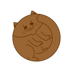 sleeping brown cat isolated home pet sleeps on vector image