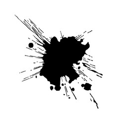 black ink drop and splash vector image