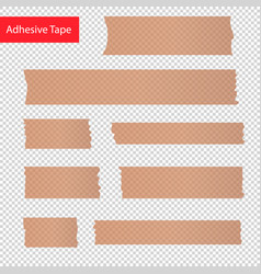 adhesive tape pieces set transparent vector image