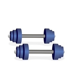 Blue metal dumbbells vector image