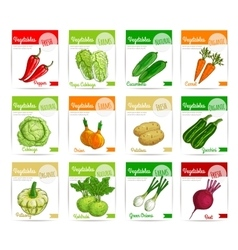 Fresh vegetable label banner and tag set design vector image vector image