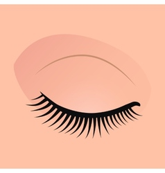 Close female eyes image with beautifully fashion vector