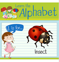 Flashcard letter I is for insect vector