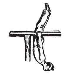 gymnastics vintage vector image