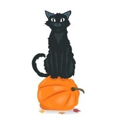 Black cat sitting on Halloween pumpkin vector image vector image