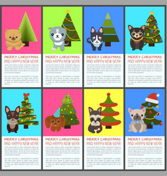 merry christmas and happy new year pets and spruce vector image