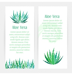 Aloe vera vertical banners set vector