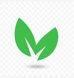 green leaf eco bio icon vector image