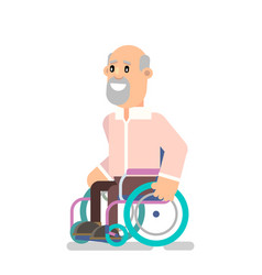 person in a wheelchair vector image