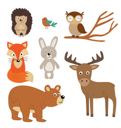 Set of isolated forest animals vector
