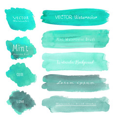 set of mint watercolor on white background vector image