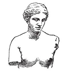 Venus of melos vintage vector