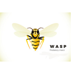 wasp cartoon isolated on white background vector image