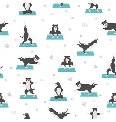 Yoga dogs poses and exercises seamless pattern vector