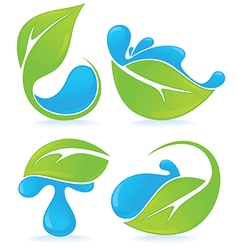 leaves and drops vector image