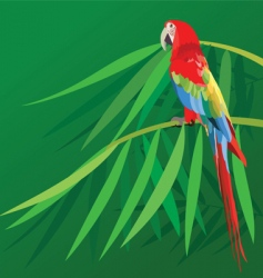 parrot on bamboo vector image vector image