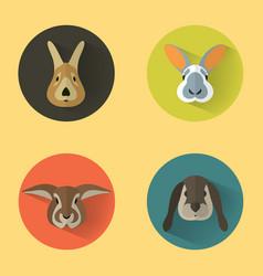 rabbit portraits with flat design vector image