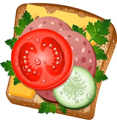 Ingredients for a sandwich vector image vector image