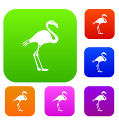 Flamingo set collection vector