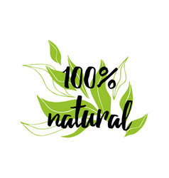 handwritten lettering sign natural organic vector image