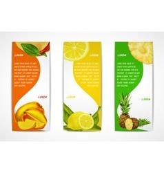 Tropical fruits vertical banner set vector image